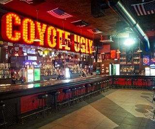 Coyote Ugly at New York New York